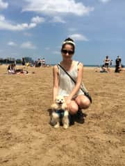 Doggy beach in Chicago