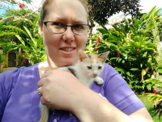 Resident kittens at our hotel in the Dominican Republic while there with World Vets