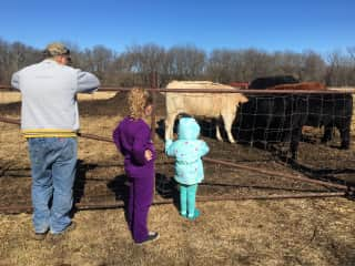 Mike, our granddaughter, and great niece feeding our cows.