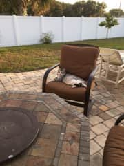 Phantom enjoying the patio and waiting for the fire pit