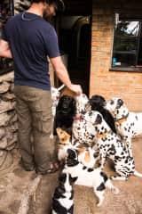 Wayne with nine dogs in Northern Zambia. Yes, nine!