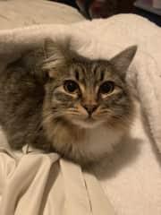 My baby, Stella.