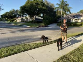 Charlie and Rosco in Sarasota, FL