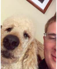 Walter was a large old poodle who was slow to warm up to people. But once he got familiar with you, he was a real sweetheart!