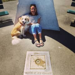 I met a random dog in Nelson, NZ