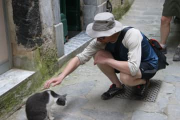 Making friends with a cat in the Cinque Terre, Italy