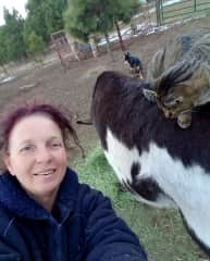 Cowboy, the kitty, got his name as he adores riding Burrito, the donkey in Colorado!