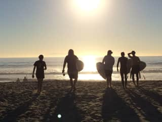 Always looking for a good surf.