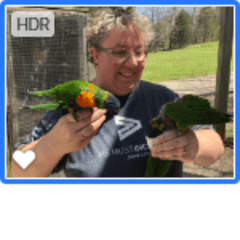 Kimberly being the bird lady