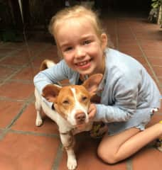 A three legged dog my daughter befriended.