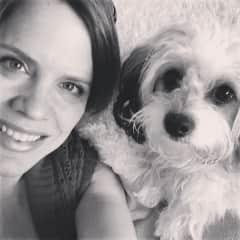Dog-sitting Maggie in Florida