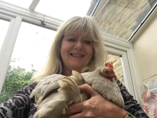 Petsitting for a feathered friend in Oxfordshire