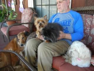 A lap full of buddies.