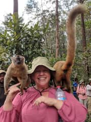 Bonding with lemurs in Madagascar