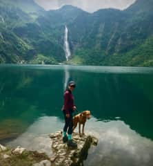 This is Tomoko with Lexi in the high Pyrenees. We spent three weeks with her in July 2018 and five weeks in July 2019.. When this was taken we had walked 8kms and climbed an elevation of 750mtrs.