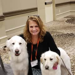 Loving rescue dogs at Best Friends National Convention