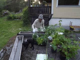 Gardening time..