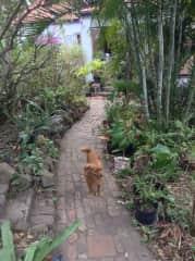 Annie on entry walkway.