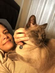 With my cat, Rumi, a lovable and energetic 3-year-old Siamese. :)