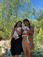 House sit in Turkey 2019 - 3 cats and 2 dogs on farmland