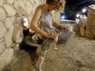 With a street cat somewhere in Greece