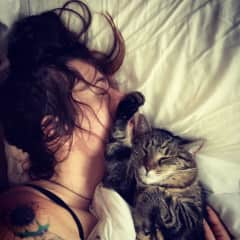 We love animals - this is the kind of care your pet could be receiving!  (Full Disclosure: this is our cat, Greta, who has her own lovely sitters when we go away)