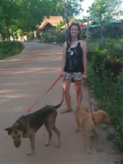 Volunteering at Lanta Animal Welfare
