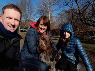 We fell in love with lovely Gilda, an Italian Spinone in New York