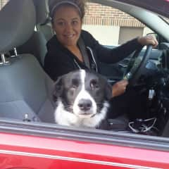 My no - eyed border collie, Noni and me leaving for a roadtrip