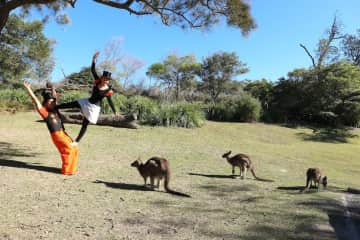 Acrobatics with the wallabies in Australia