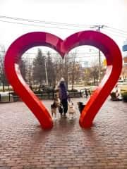 Winter walks with Tasch, Milo, & Blu