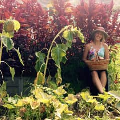 Gardening and studying botany and plant medicine are all things I'm passionate about.