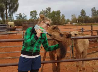 I volunteered at a wild camel sanctuary for a couple weeks out in the Outback of Australia. Yep. Australia has wild camels. One of my favorite chores was to feed the baby camels. This was