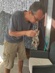 Cleaning the eyes of 1 of the rescue kittens