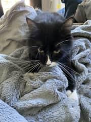 Her favorite blanket!
