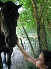 Horse friend..Burgundy, France