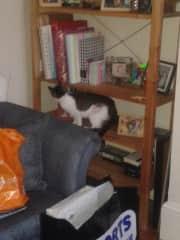 Mahira in the living room