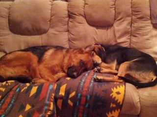 Kublai & Linus