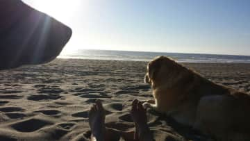 Cami and Bailey - lounging after a beach walk