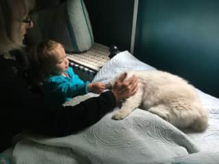 Linlee and granddaughter Charlie and Hendrix the ragdoll cat