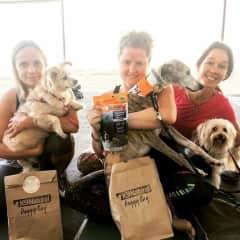 Gabi & Zina, Deb & Bob with  Ellie & I at Dog Yoga