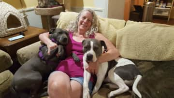 Dogs love my lap and hugs... and I like the body weight!!!!