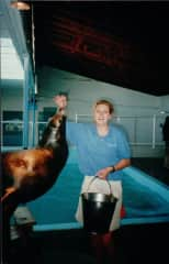 Back in the day working at the Aquarium