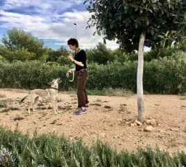 Walking with Jorge, a rescue dog  from animal shelter in Spain