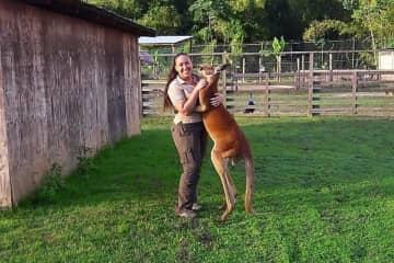 Our kangaroo Jack loved hugs