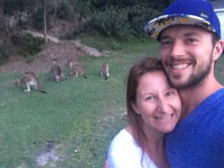 Kangaroos in Western Australia