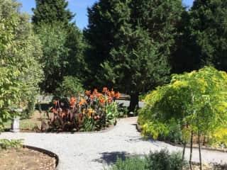 Garden taking shape in summer