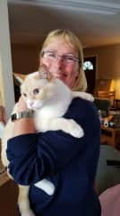 Recent sit with Frankie the cat.