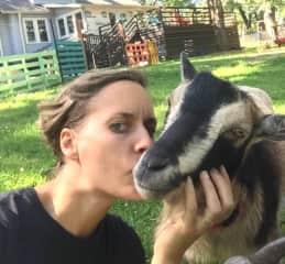Goat kisses