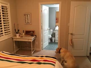 Bathroom on suite, off guest bedroom
